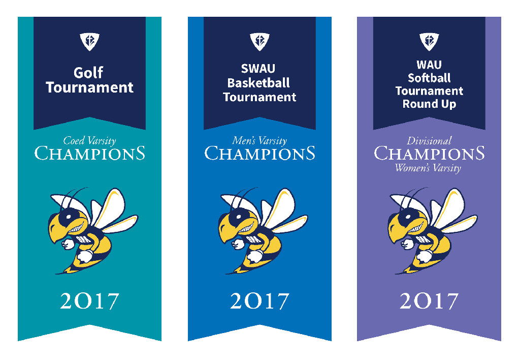 Templates Can Make Life Easier Dever Designs - Sports banner templates
